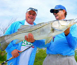 Fishing charters in Venice and englewood