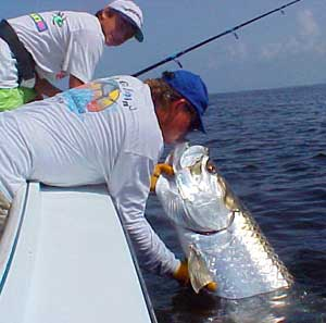 Tarpon fishing charters with Capt Van Hubbard